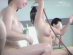 Hairy pussy Asians flashing nudity on the shower spy cam dvd 03016